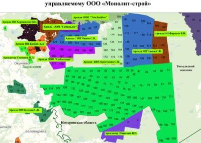 Карта-схема территорий, прилегающих к лесному участку, управляемому ООО «Монолит-Строй»