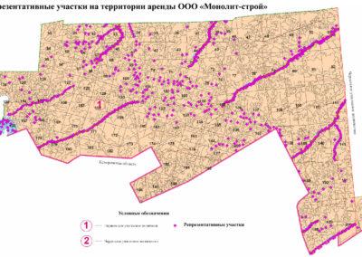 Репрезентативные участки на территории аренды ООО «Монолит-Строй»