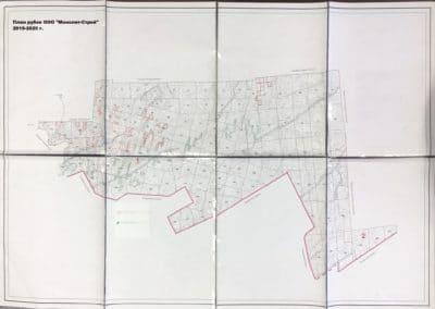 План рубок 2019-2020 г.